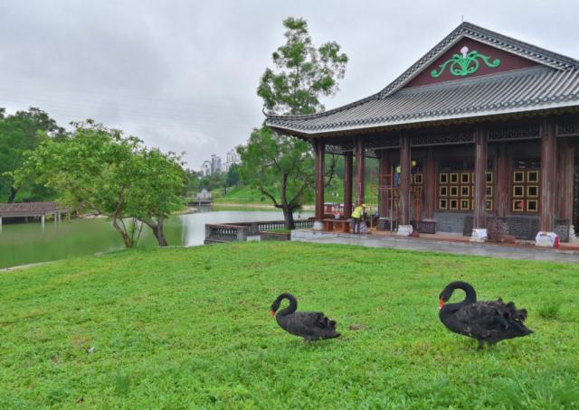 香山湖公園