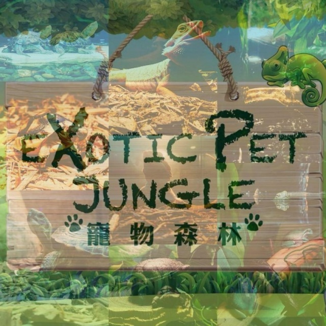 Exotic Pet Jungle - 寵物森林