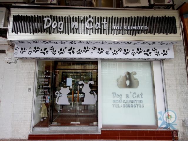 Dog n' Cat
